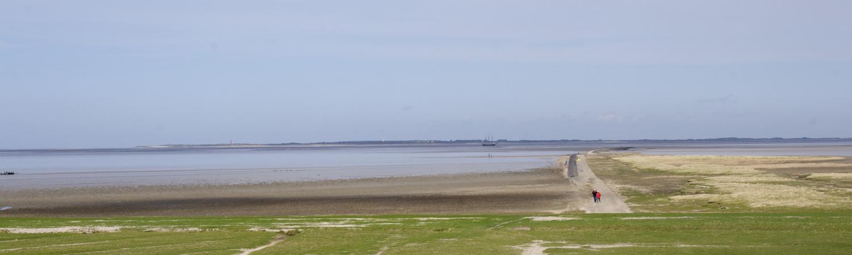 Vakantie huis te huur in Friesland aan de Waddendijk bij Moddergat.
