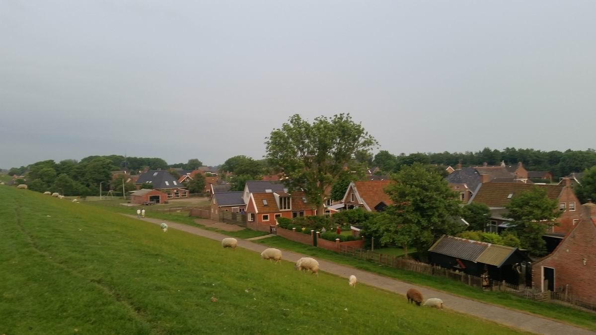 Vakantiehuis in Friesland Moddergat