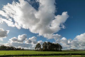 Natuur en Cultuur in Friesland