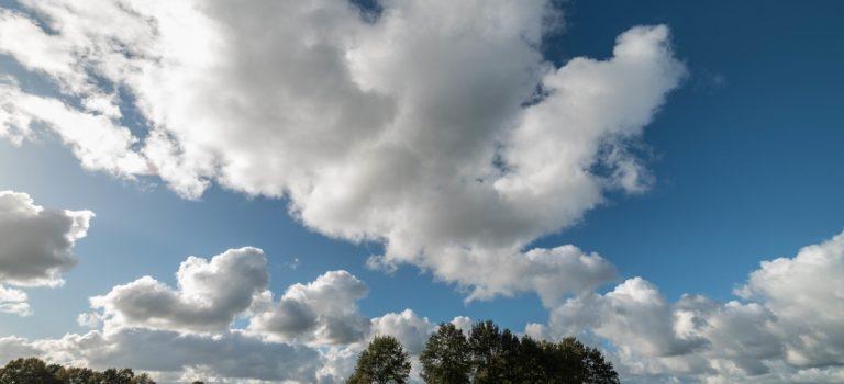 Lauwersmeer na 50 jaar een van de mooiste natuurgebieden